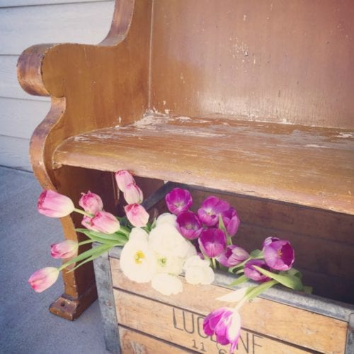 The Tattered Pew