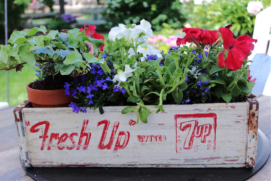 How to repurpose a vintage soda crate for your yard