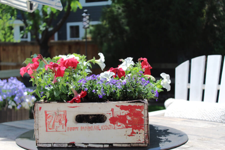 old soda crate turned patriotic planter