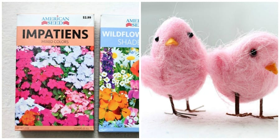 Hostess gift ideas-seeds and chicks