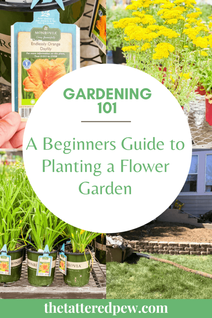 Thinking of starting a flower garden? This beginners guide will guide you through the entire process.