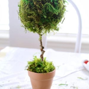 Learn how to make these mini teacup topiaries.
