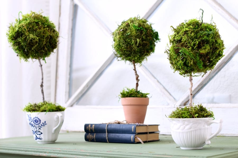 How to make a mini teacup topiary in less than 15 minutes.