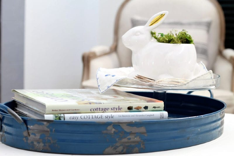 blue tray with books and bunny planter
