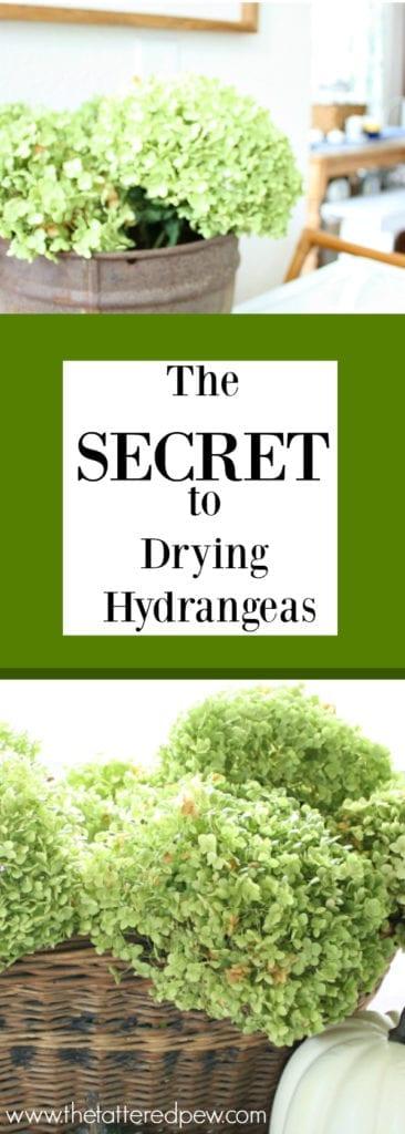 The secret to drying hydrangeas.