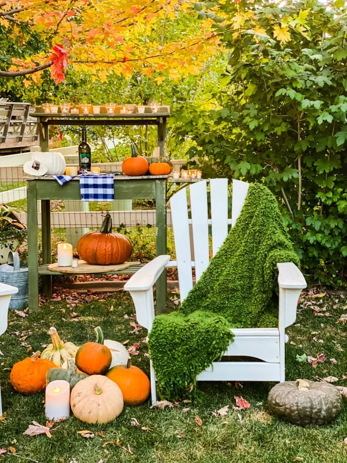 Why not step outside for a Fall evening in the garden?
