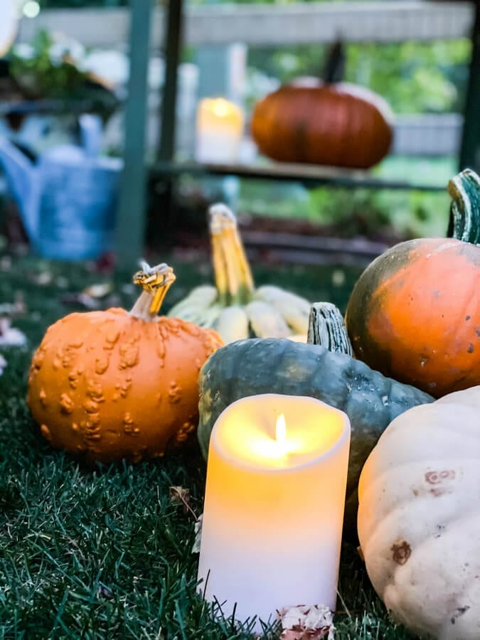 Pumpkins and candles, yes please!