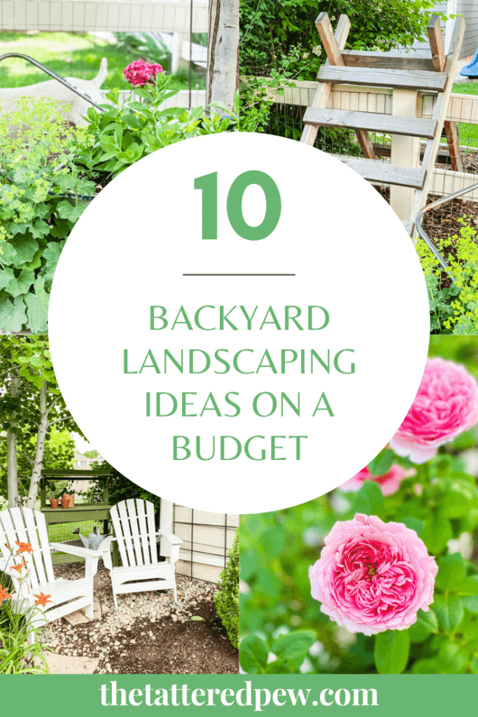 Don't miss these 10 backyard landscaping ideas on a budget!