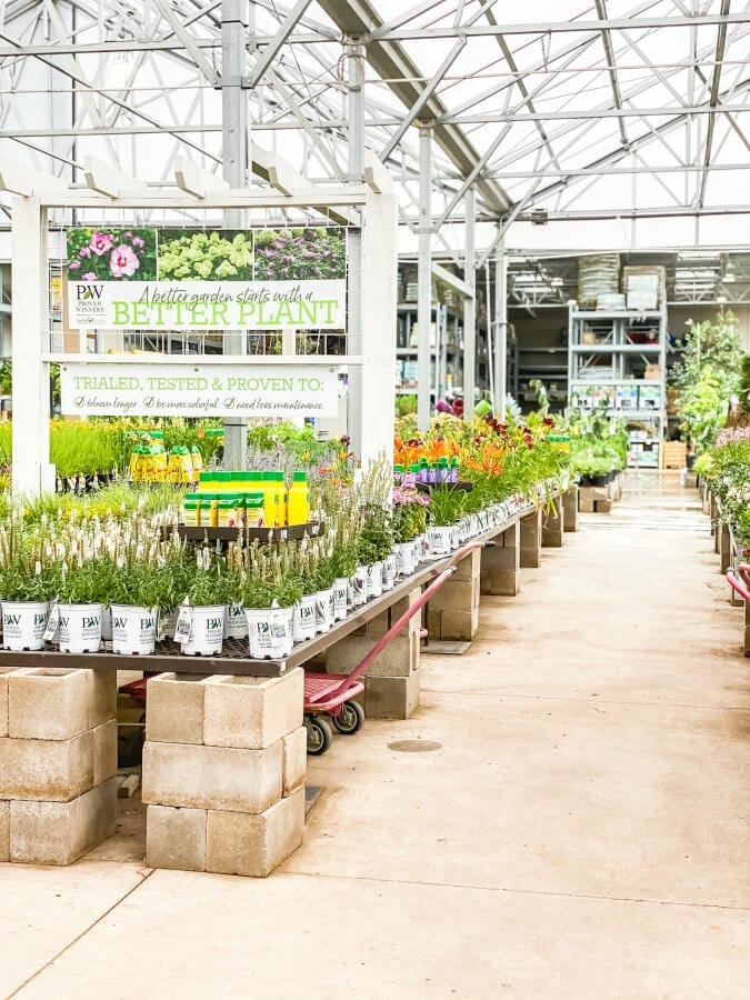 When deciding to plant your very first flower garden a nursery can be so overwhlming. Make sure to plan before you go!