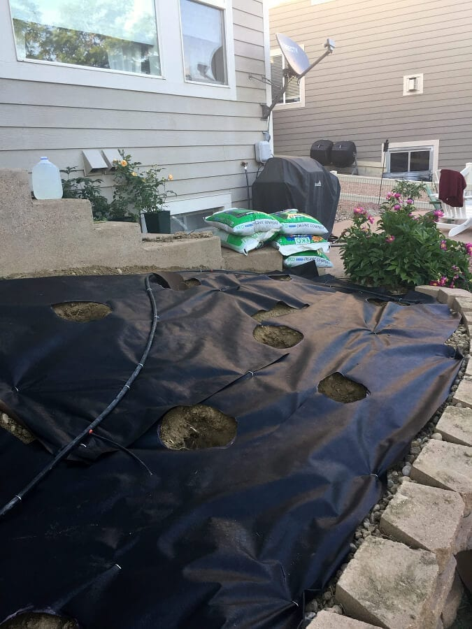A drip system is very helpful when planting your garden in a larger space.