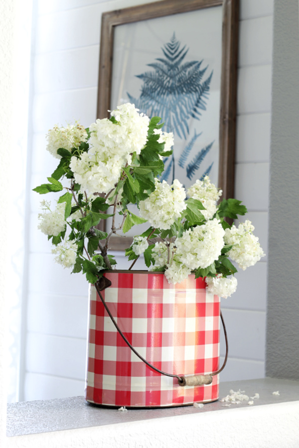 Viburnum in a red and white tin