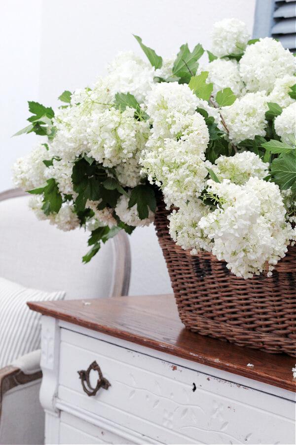 viburnum snowballs and a vintage basket