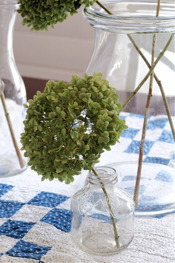 A dried hydrangea and an old apple juice glass bottle.