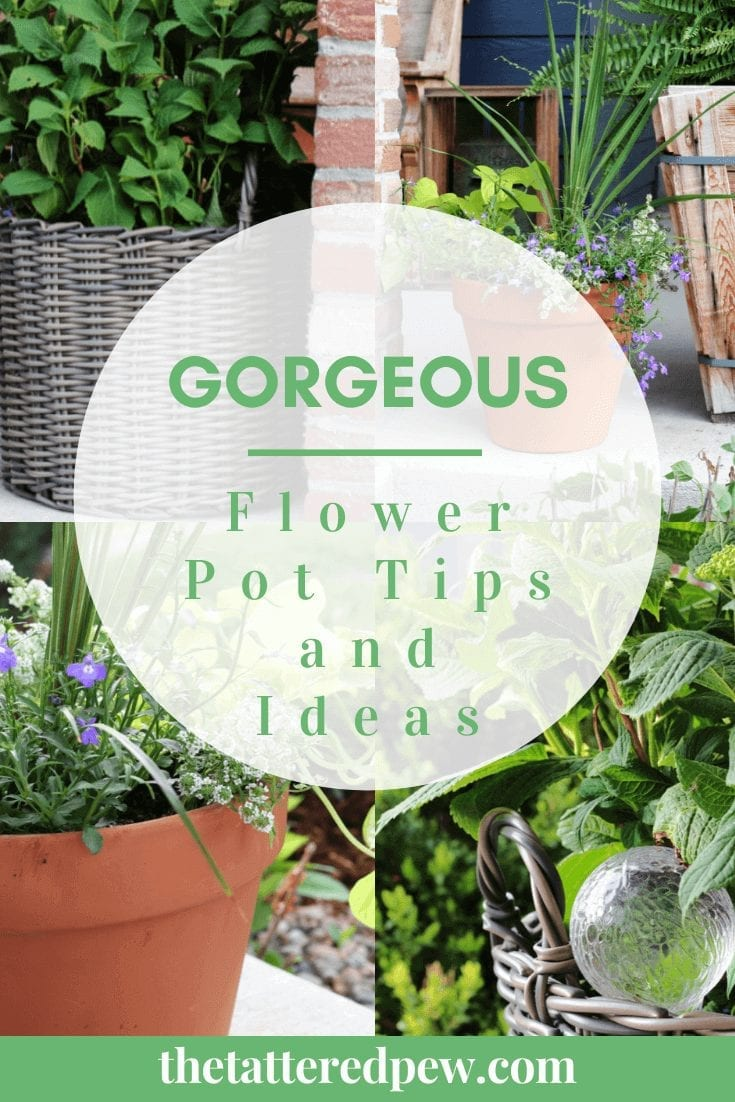 Check out these gorgoeus flower pot tips and ideas!