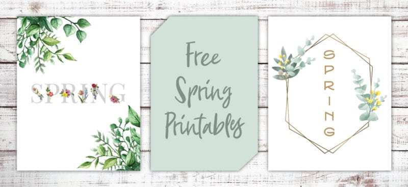 These beautiful modern farmhouse printables for Spring are free and a great way to decorate with style on a budget.
