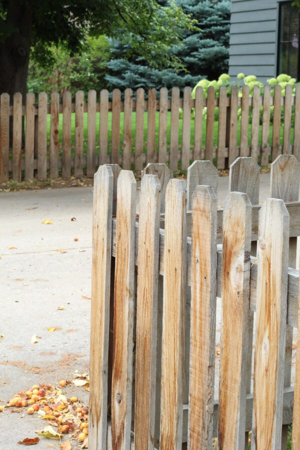 crab apples and wooden fences in our front yard tour!
