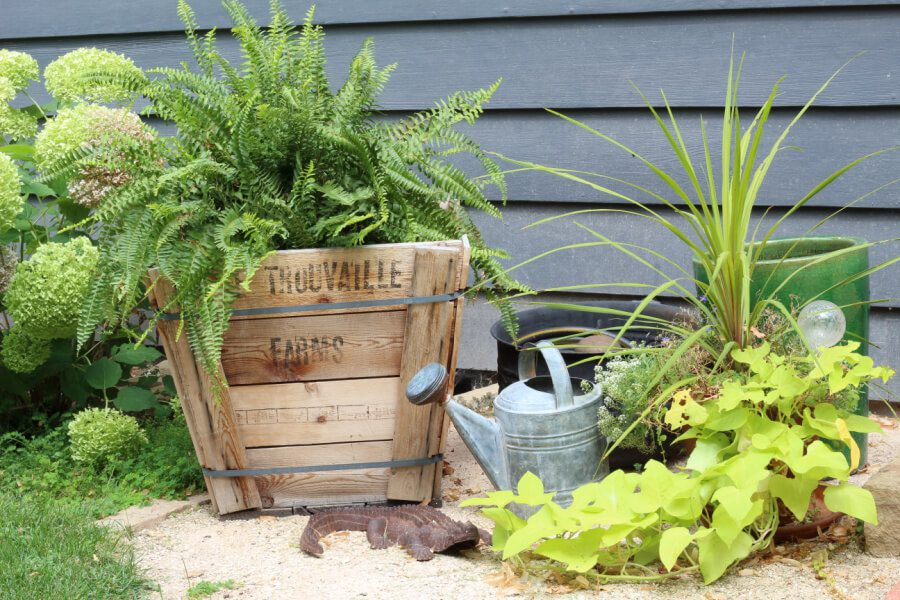 Our front yard tour featuring my favorite wooden crate, planters and watering can!