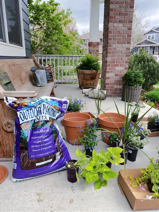 Preparing to plant our summer pots!