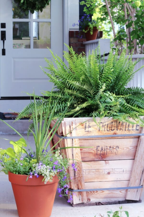 Unique container ideas for plants and flowers on your porch