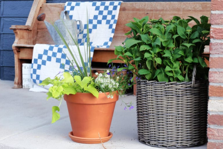 Gorgeous Flower Pot Tips and Ideas