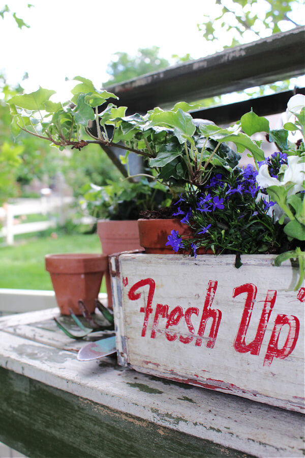 A patriotic themes planter for your yard using a vintage soda crate!