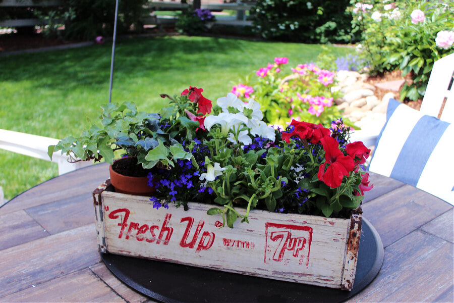 Patriotic and Thrifty planter