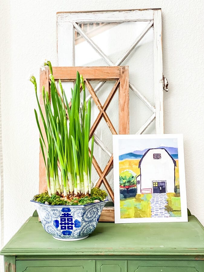 How To Grow and Use Paperwhites In Your Winter Decor