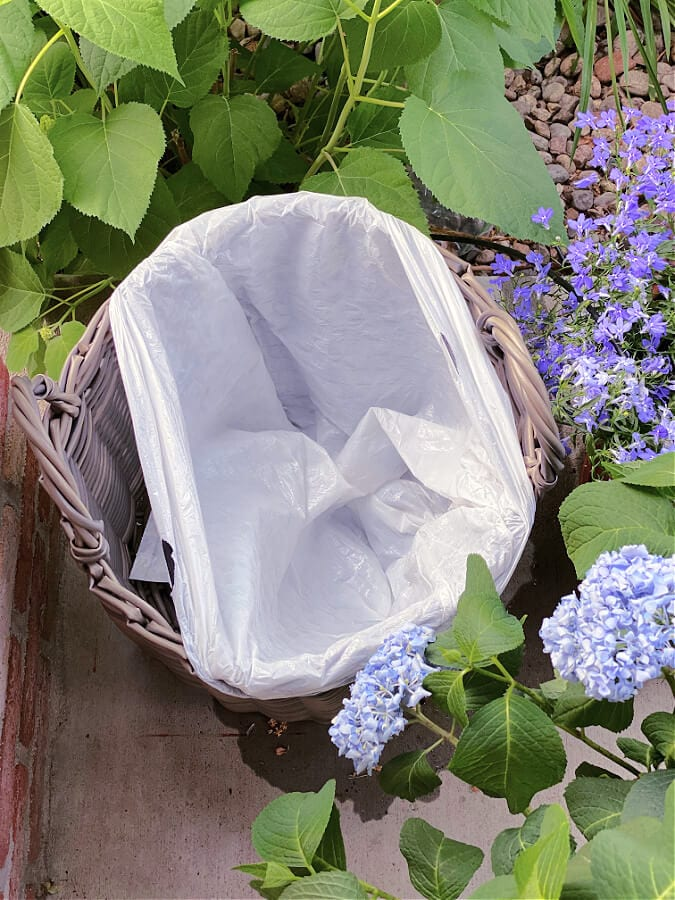 The hydrangea water hack you will love!