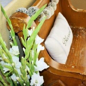 Pew gladiolus