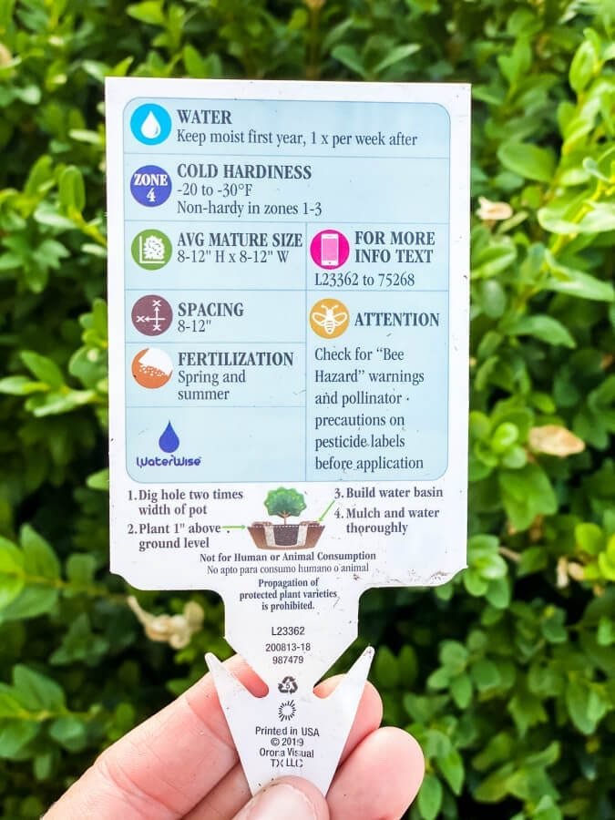 As a new beginner gardener you should always pay attention to the plant and flower tags.