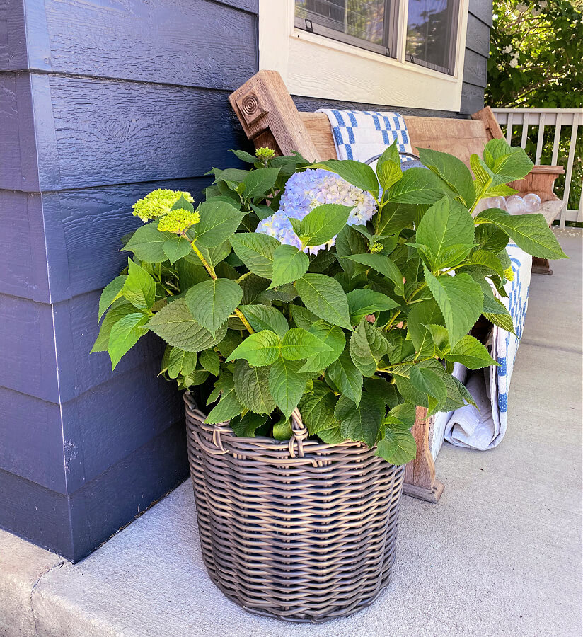 My new favorite outdoor baskets!