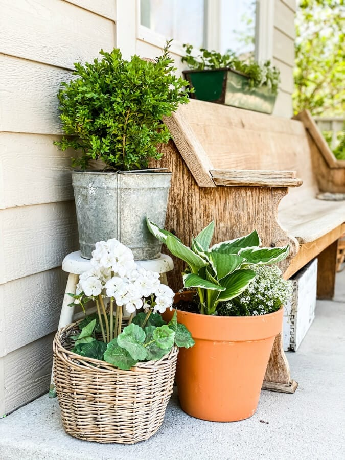Preparing your porch for spring involvs plants, flowers and decor!
