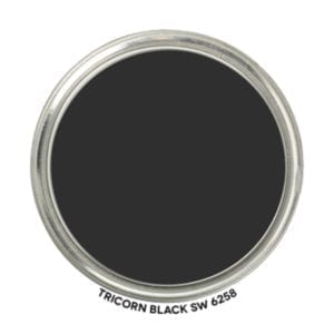 Our interior doors are painted Tricorn Black by Sherwin Williams.