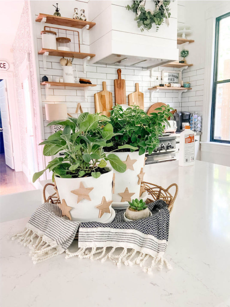 Welcome Home Saturday: Terra Cotta Herb Star Planter