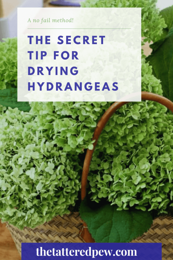 You can thank me later for my secret tip for drying hydrangeas!