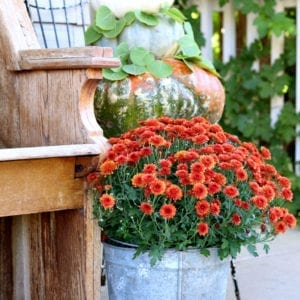 Mums, pumpkins and old vintage contaiers are perfect for Fall porch decor.