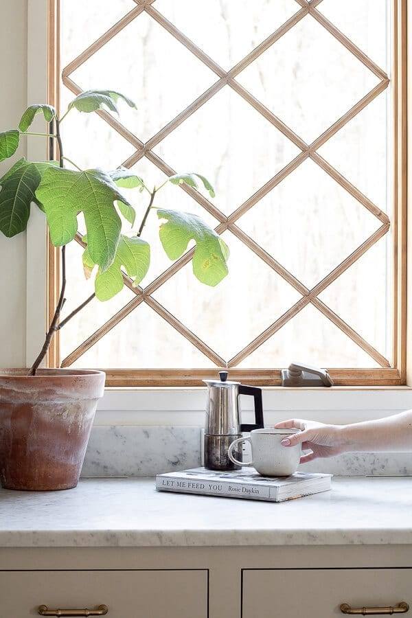 Welcome Home Sunday: Working on your green thumb with Houseplants